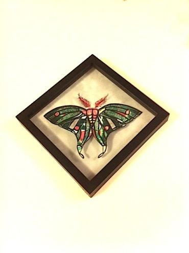 k-lecocq-Spanish Moon Moth